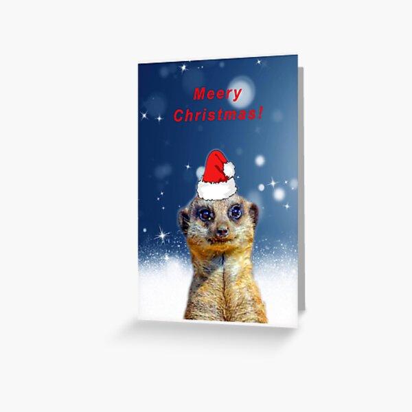 Meerkat Merry Christmas Greeting Card