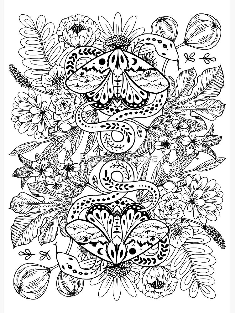 Moths and snakes by PetraHolikova
