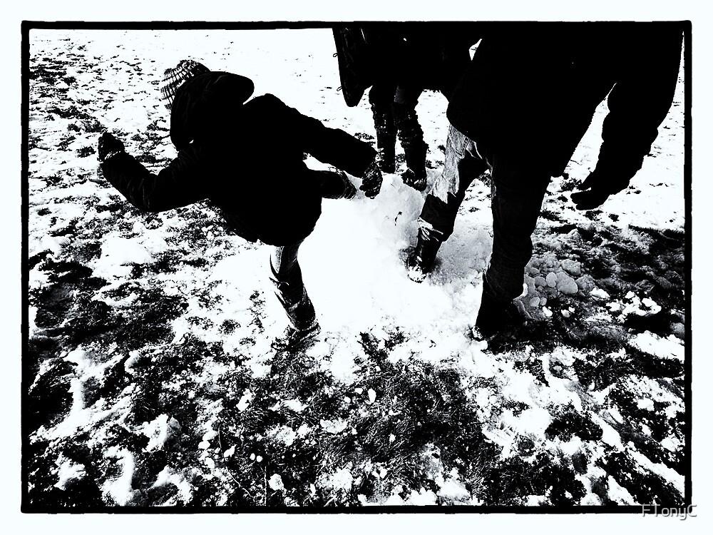 Death of a Snowman by FTonyC