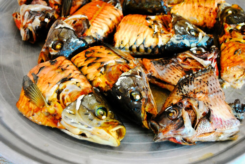 Nile Fish Dinner by jvoweaver