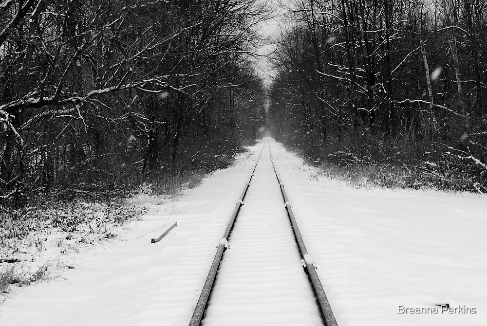 Journey by Breanna Kane