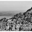 Grand Canyon National Park #2 - Arizona USA by Edith Reynolds
