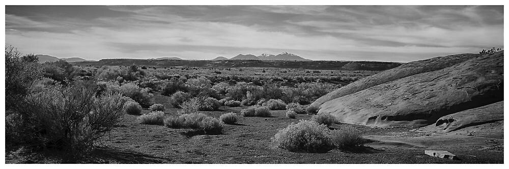 Four Peaks From Wupatki - Flagstaff, AZ USA by Edith Reynolds