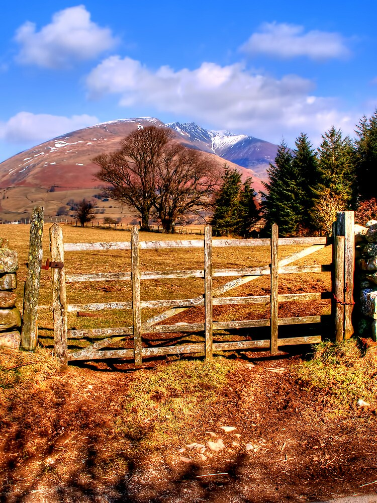 Skiddaw, Lake District by Stephen Smith