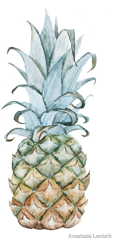 watercolor, print the first pineapple by Anastasia Lembrik