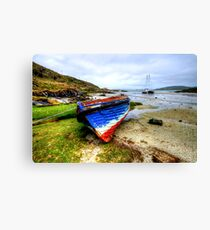 Barra Canvas Print
