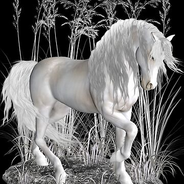 Ivory .. a white stallion by LoneAngel