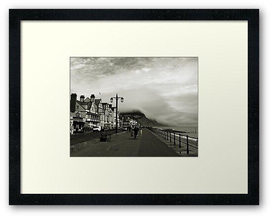 Devon, England by WERNER SCHUMANN