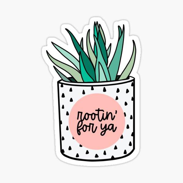 Pegatina Cactus Pegatina