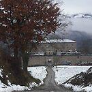 - OAKS   -  LA QUERCIA E IL SUO MULINO -----VETRINA RB EXPLORE 2014 ----ITALIA - MONDO - by Guendalyn