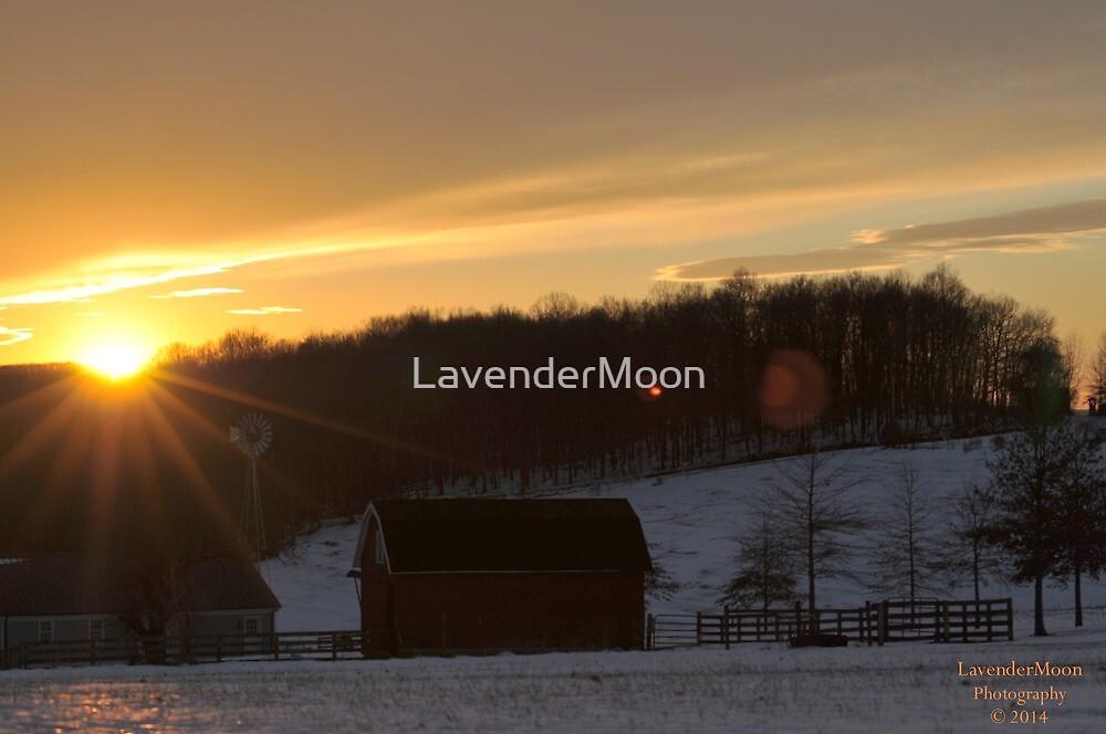WinterHollow by LavenderMoon