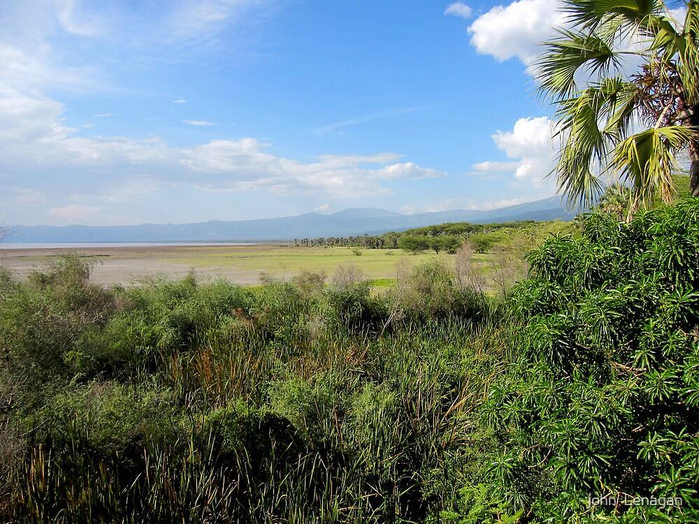 Looking North  from  Lake Eyasi towards Ngorongoro  - Tanzania by john  Lenagan