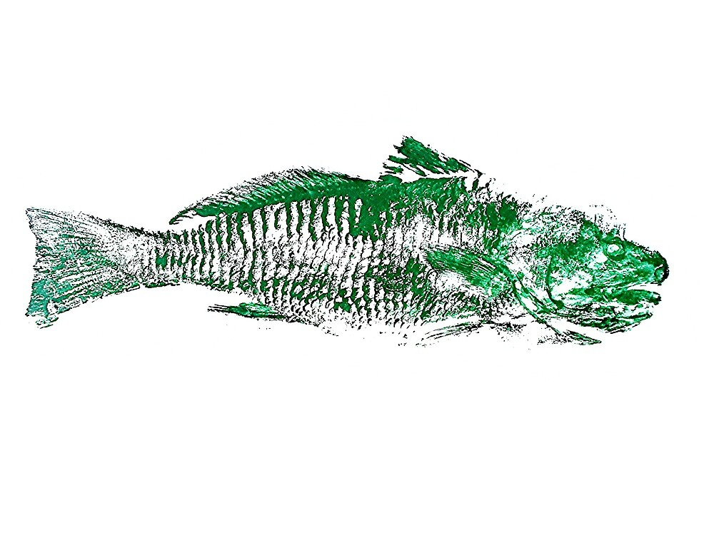 Gyotaku fish rubbing, Florida Redfish, Surreal Green by alan barbour