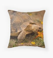 A Colorful Snack Throw Pillow