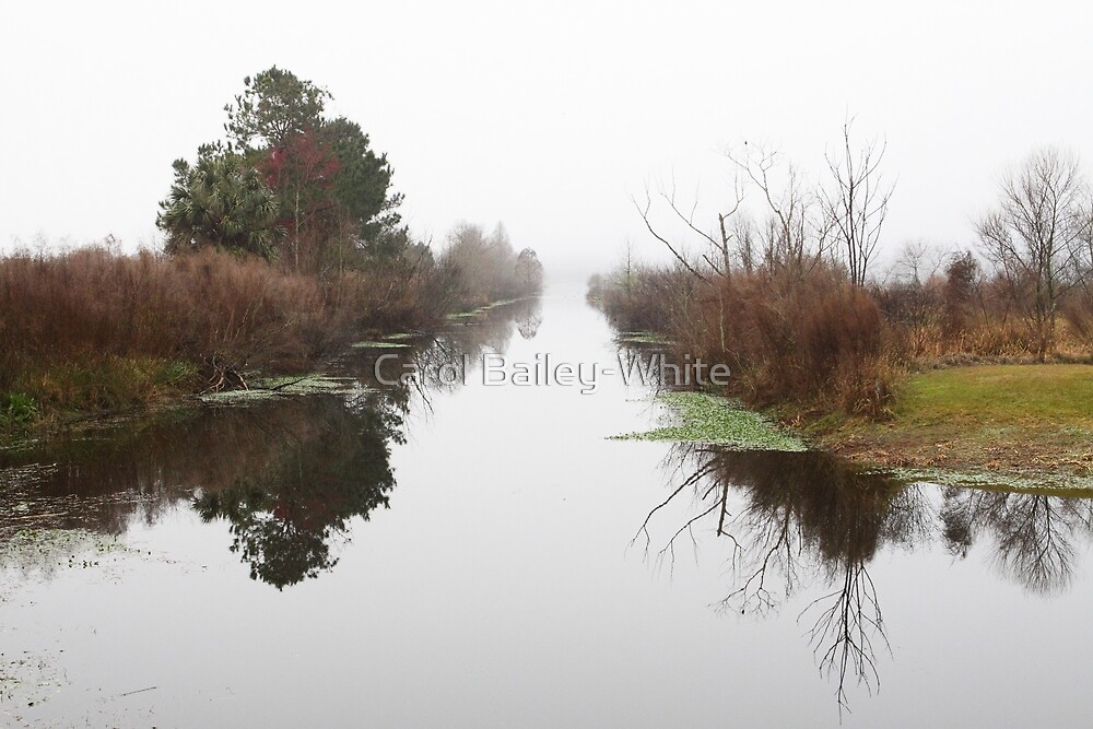 Misty Reflections by Carol Bailey-White