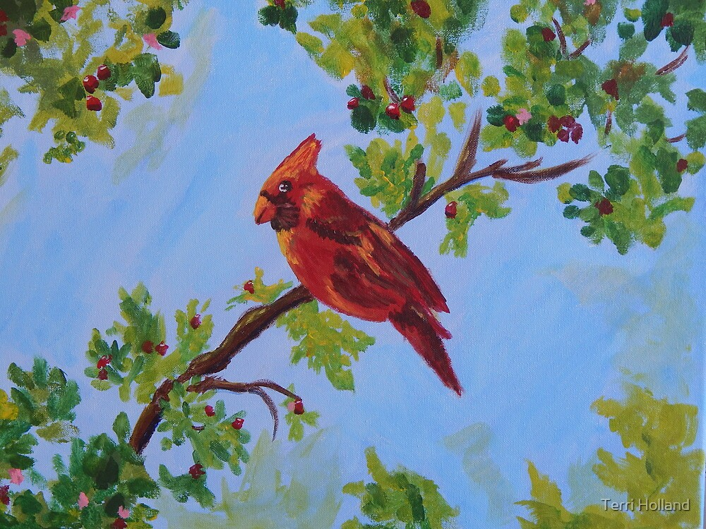A Cardinal From Heaven by Terri Holland