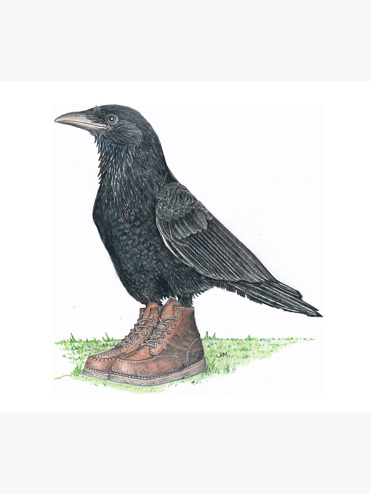Crow in Roger's boots by JimsBirds