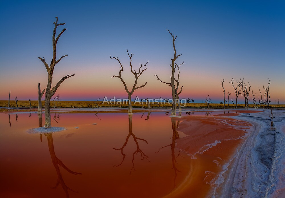 Dawn Reflections by Adam Armstrong