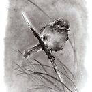 Bird on the branch litlle sparrow winter cold rain painting ink by Mariusz Szmerdt