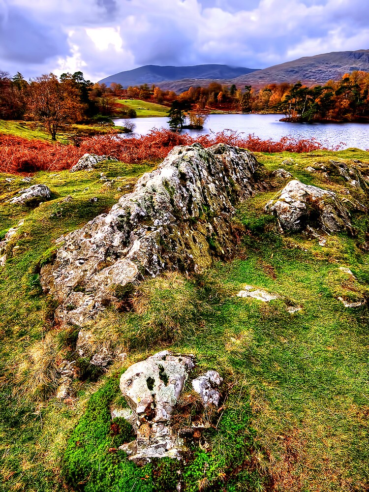 Tarn Hows by Stephen Smith
