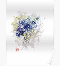 Cornflower Cornflowers Blue Yellow Green watercolor painting Poster