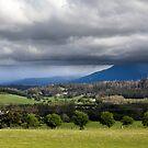 Northern Tasmania by margotk