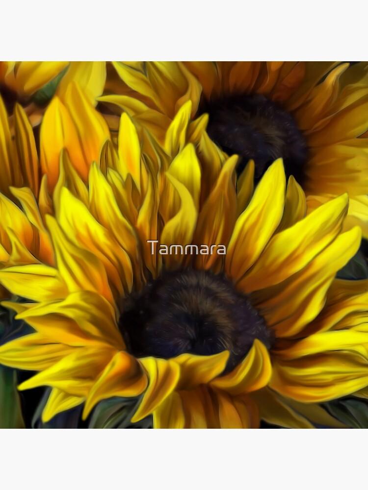 Sunshine by Tammara