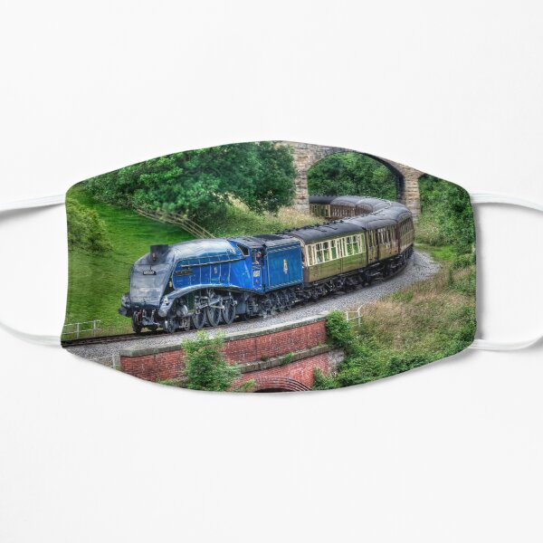 60007 Sir Nigel Gresley Locomotive Mask
