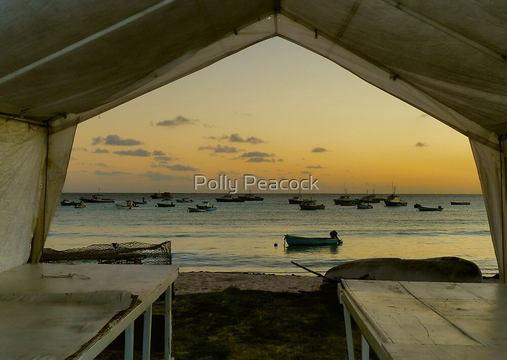 Barbados Fishing Boats by Polly Peacock