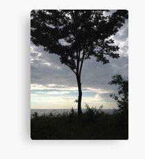 Lake Michigan tree at sunset Canvas Print