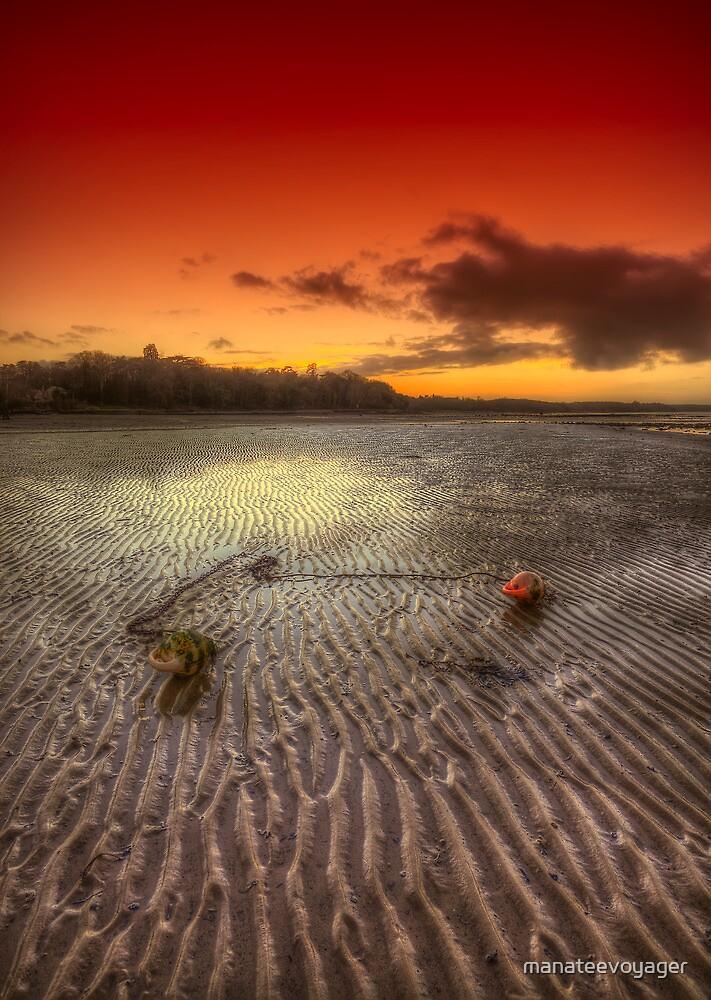 Mooring Buoy Sunset by manateevoyager