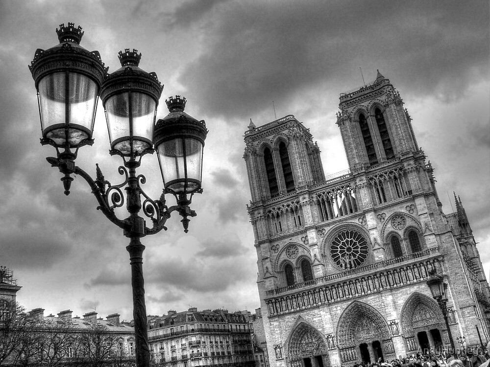 Notre Dame by AndyHuntley