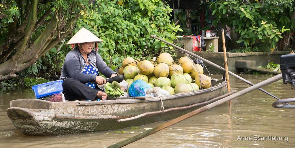 floating market by Anne Scantlebury