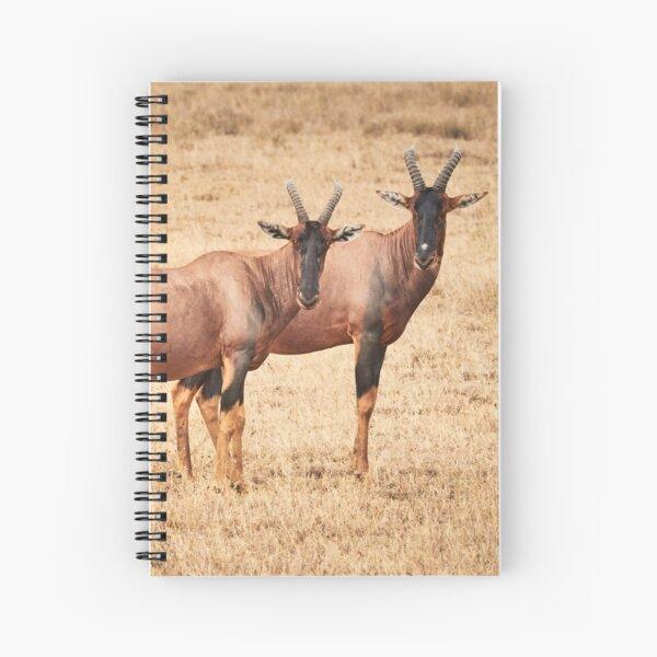 Hartebeest Stare Spiral Notebook