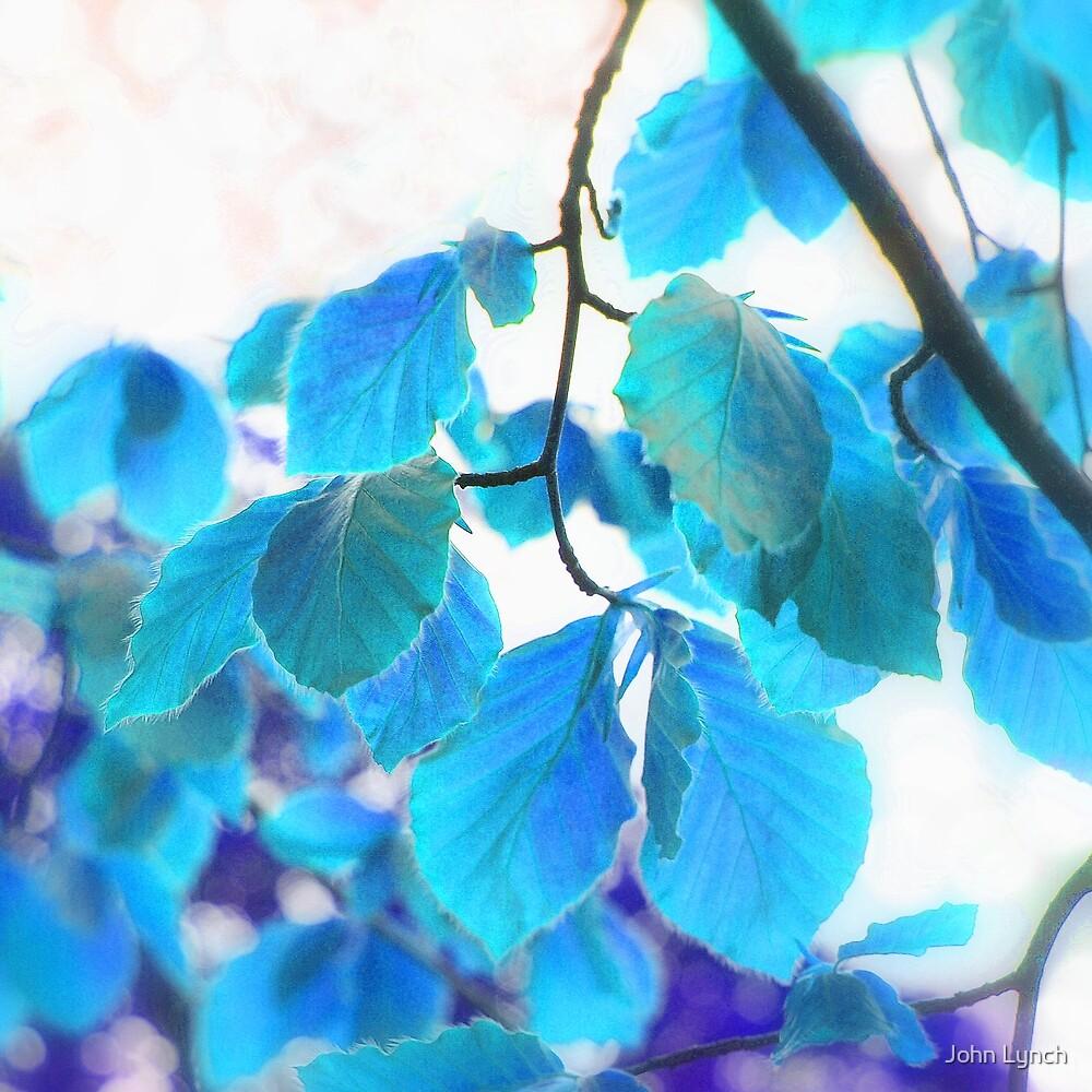 Leaves 4 by John Lynch