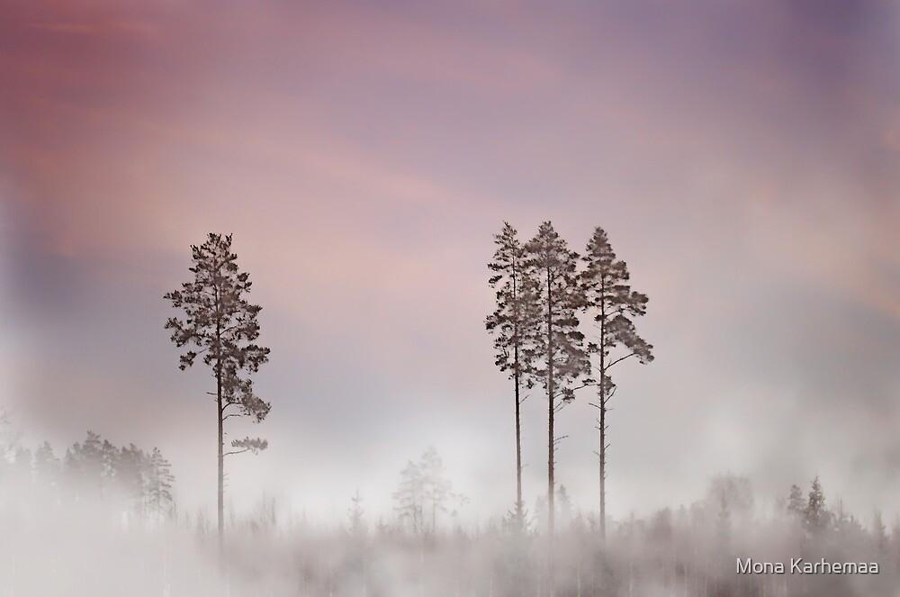 Foggy by Mona Karhemaa