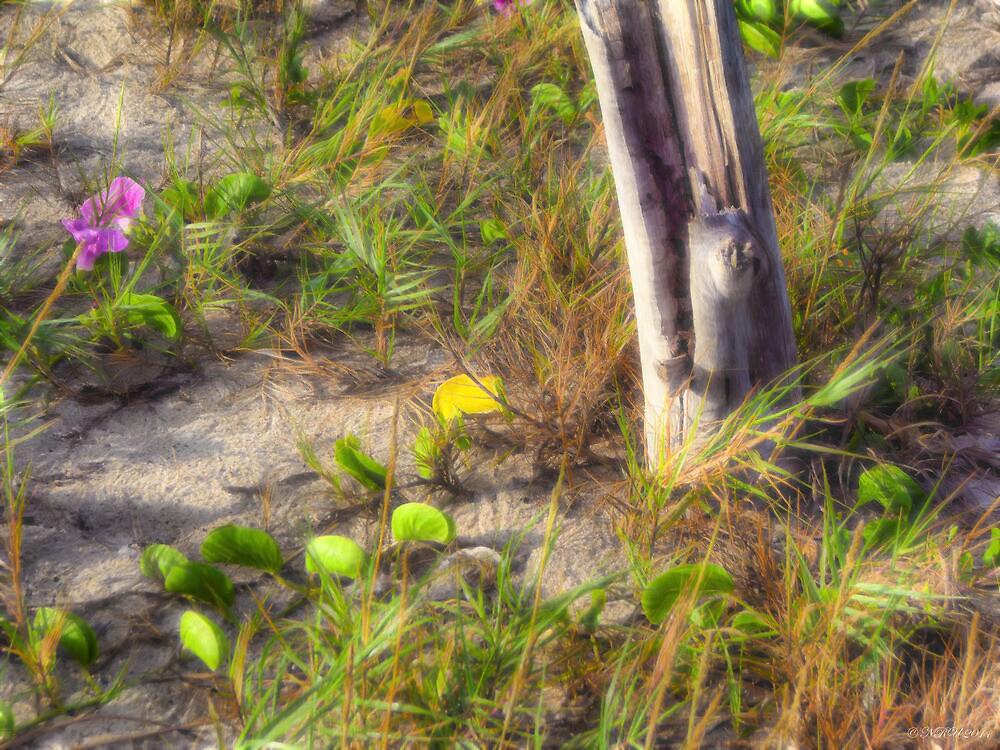 Beach Scene by Noble Upchurch