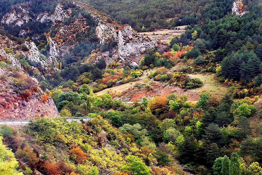 Autumn in Moixero (Spanish Pyrenees) by Arie Koene