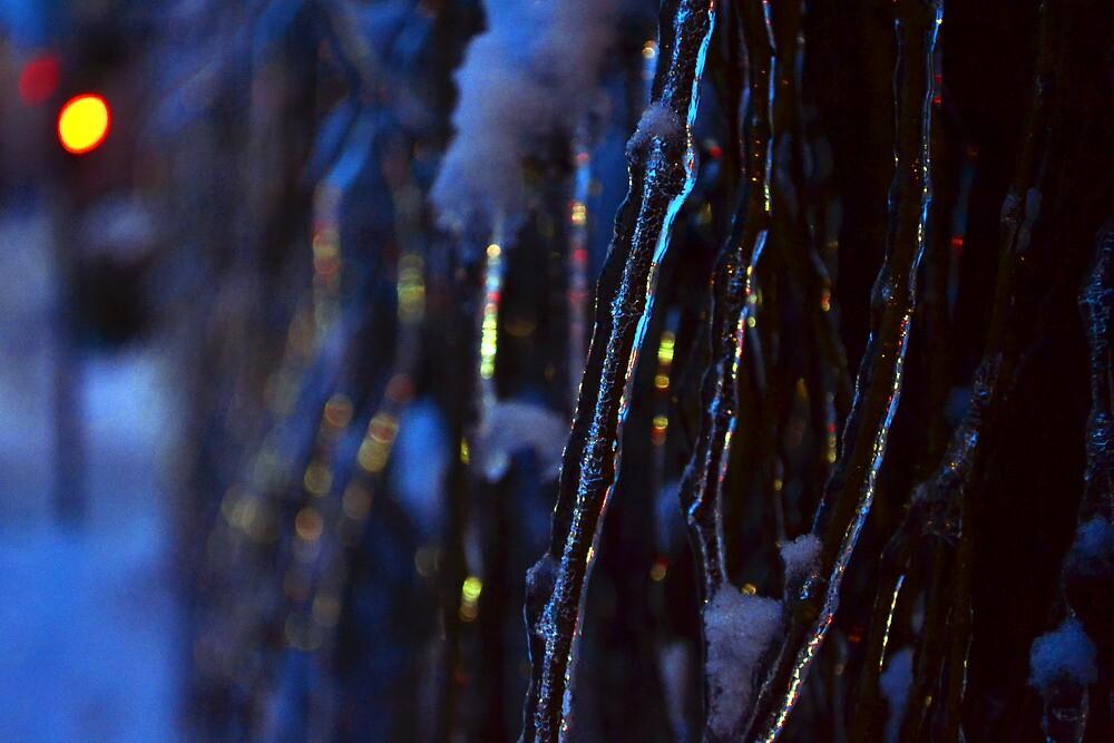 Winter light by Katarina Kuhar