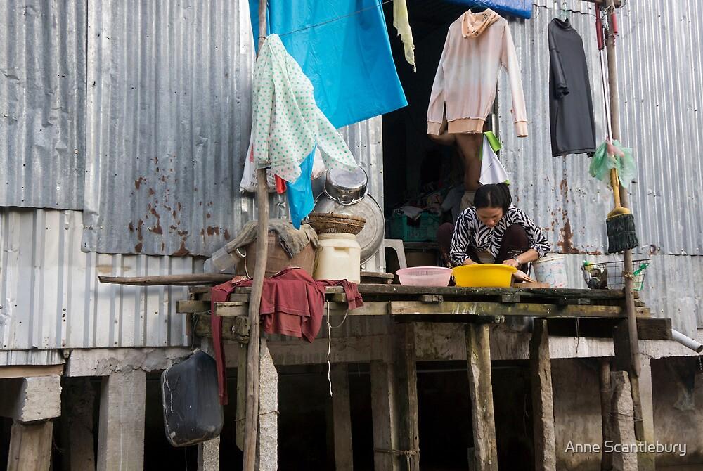 village life by Anne Scantlebury