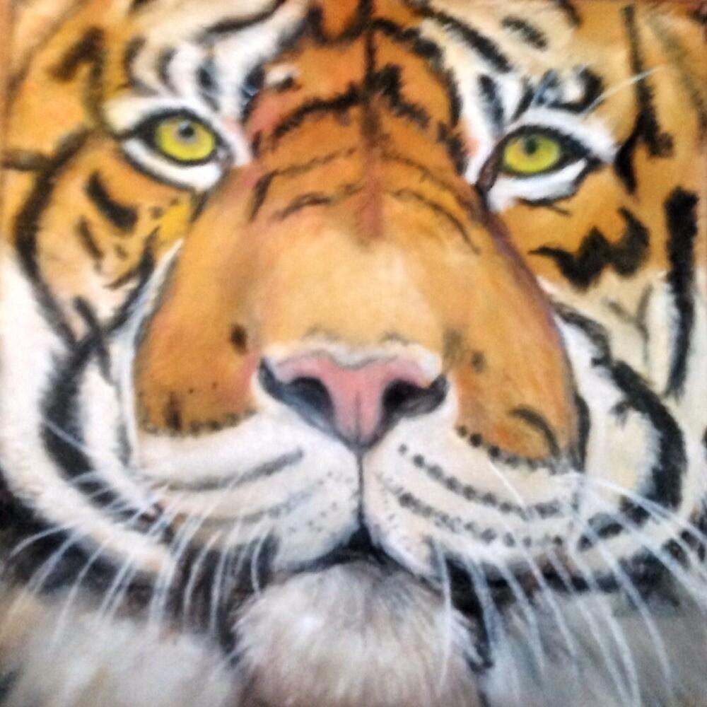 Tiger, tiger by AnneSmart