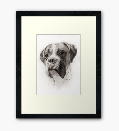 """""""Bailey"""" Framed Print"""