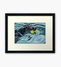 Ball Dog Framed Print