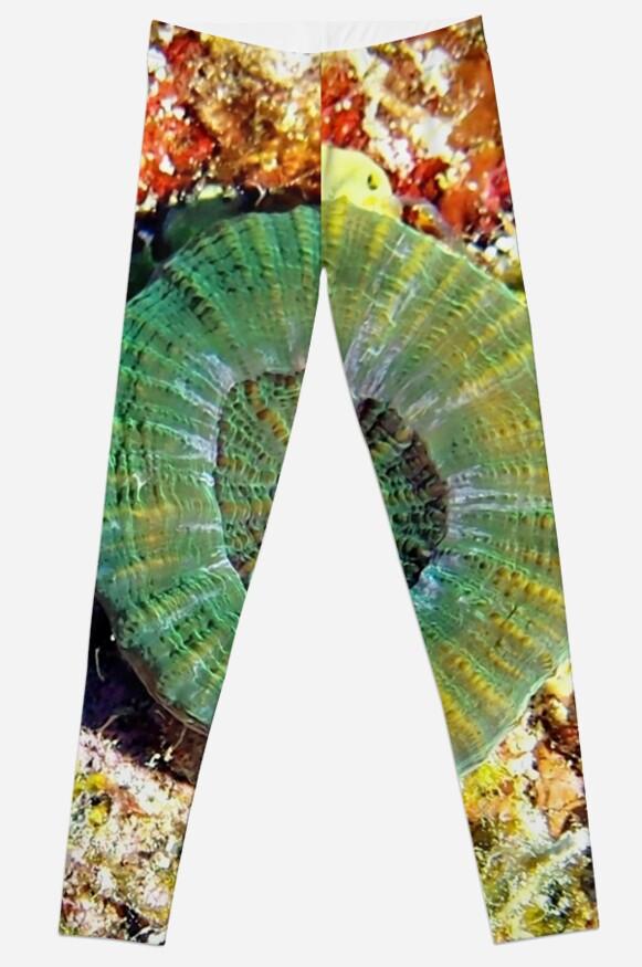 Emerald Green Artichoke Coral by Amy McDaniel