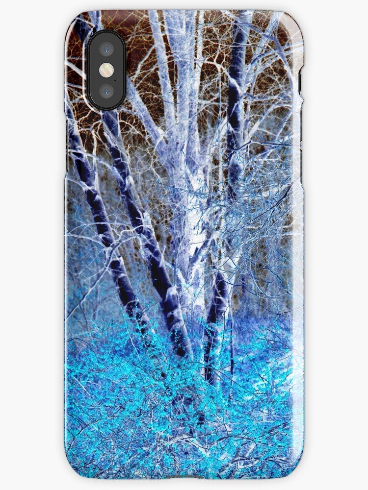 Birch by Aurapro Designs