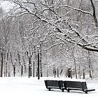 A Winter day in New York City  by Alberto  DeJesus