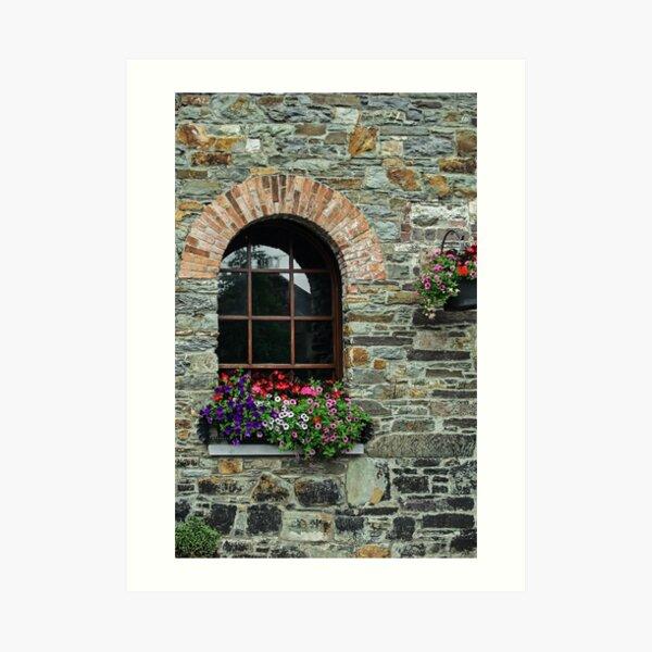 Window on the Great Famine Art Print