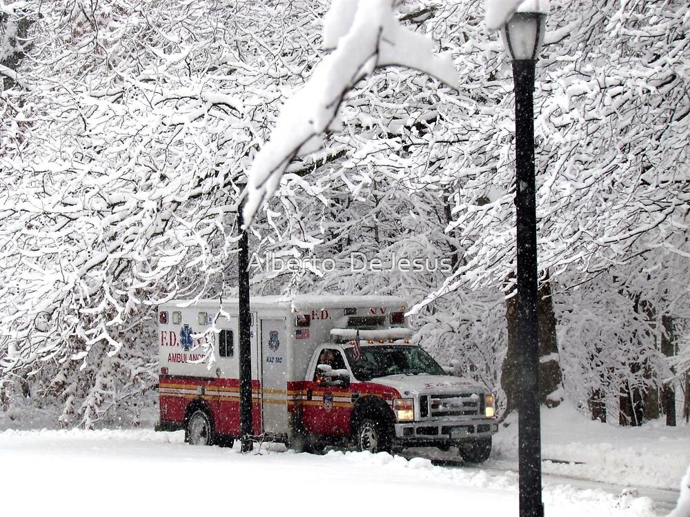 Snow emergency! by Alberto  DeJesus