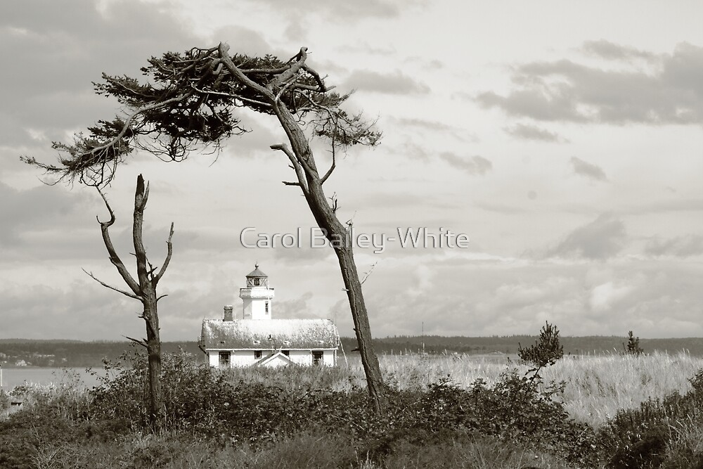 Point Wilson Lighthouse by Carol Bailey-White