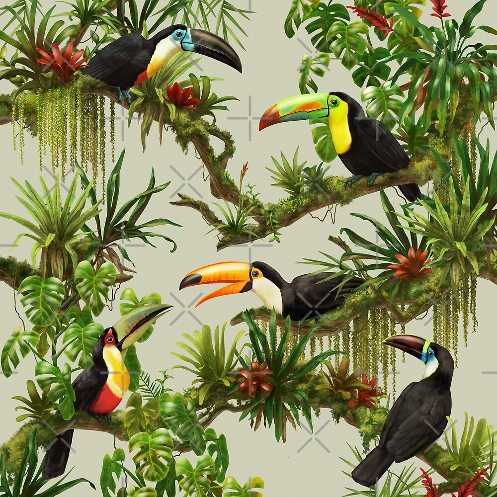 Toucans and bromeliads - canvas background by Iker Paz Studio